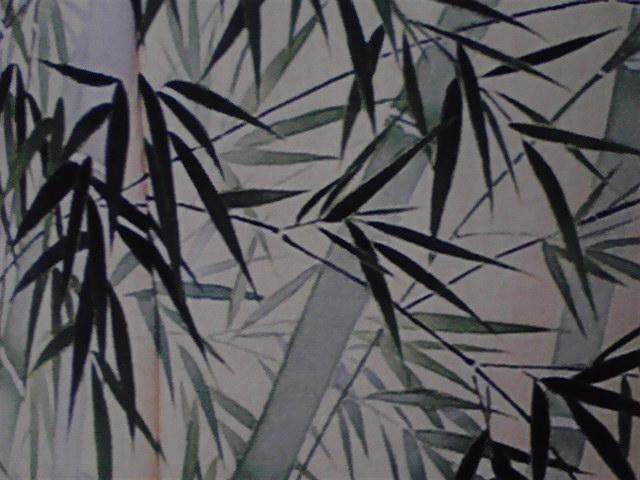 竹の子の季節〜♪の豆知識(^_-)