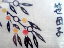 2010061110336